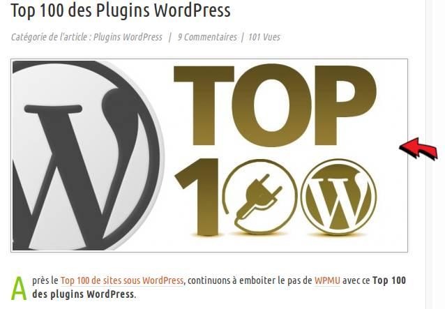Écrire mon premier article avec WordPress